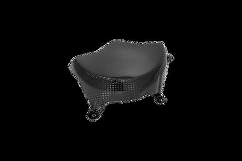 Lichtmaschinenabdeckung in Carbon von LighTech für Ducati Panigale V4/S/R
