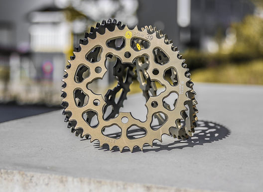 Sitta Kettenrad für Ducati Panigale V4 R [206D]