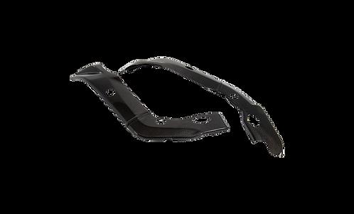 Rahmenabdeckung in Carbon von LighTech für BMW S1000RR (09-14)   CARB1050