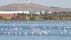 Laguna-Camino-Villafranca-FOTO-Camunas_E