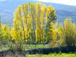 Valle lozoya.jpg