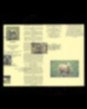 SheepScanMobile3.jpg