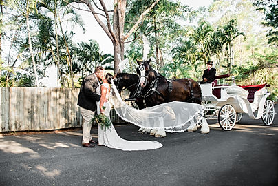 New South Wales Wedding Photographer Wedding Horses Carriage