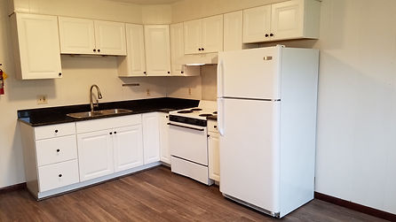 Kitchen in the Castleton Apartments