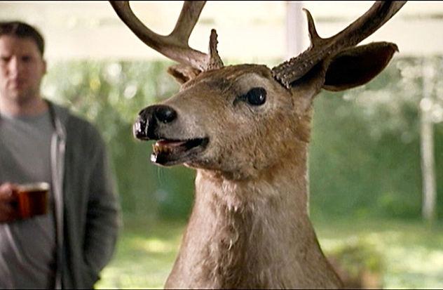 Deer--activisionCC.jpg