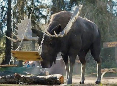 Farmers_Insurance_Moose_Commercial_edite