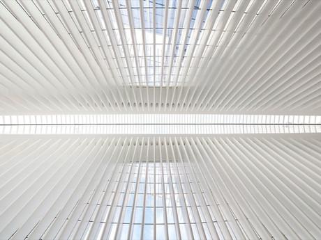 World Trade Center Transportation Hub - Óculus