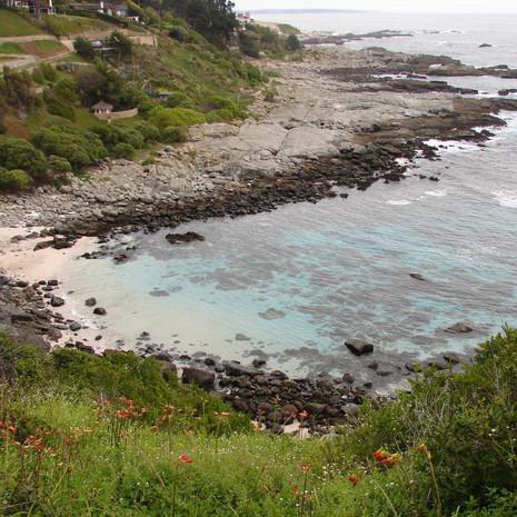 Ecosistemas costeros