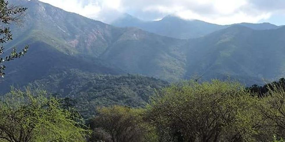 Chile Mediterráneo: un hotspot de biodiversidad