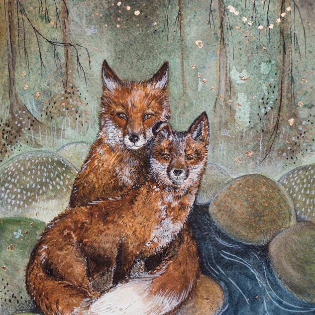 Lišky v lese