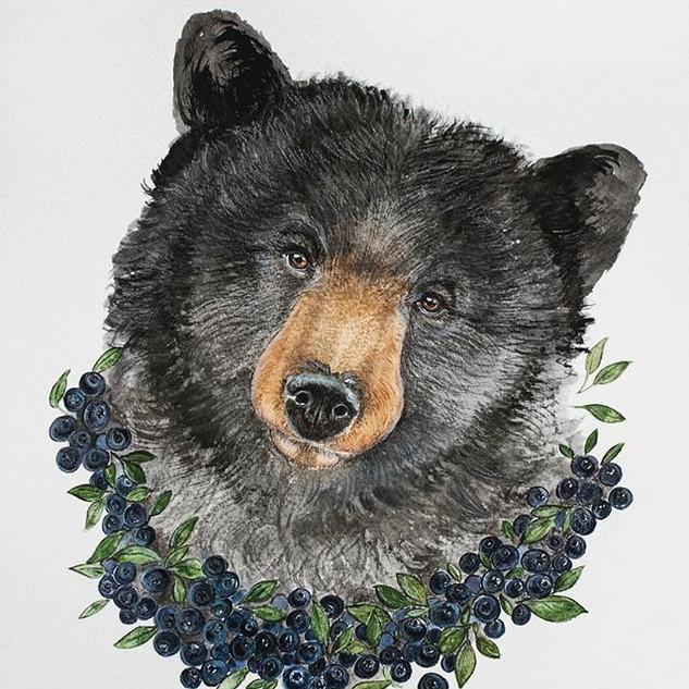 Medvídek v borůvkách