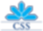 Logo_CSS_Assurance.svg.png