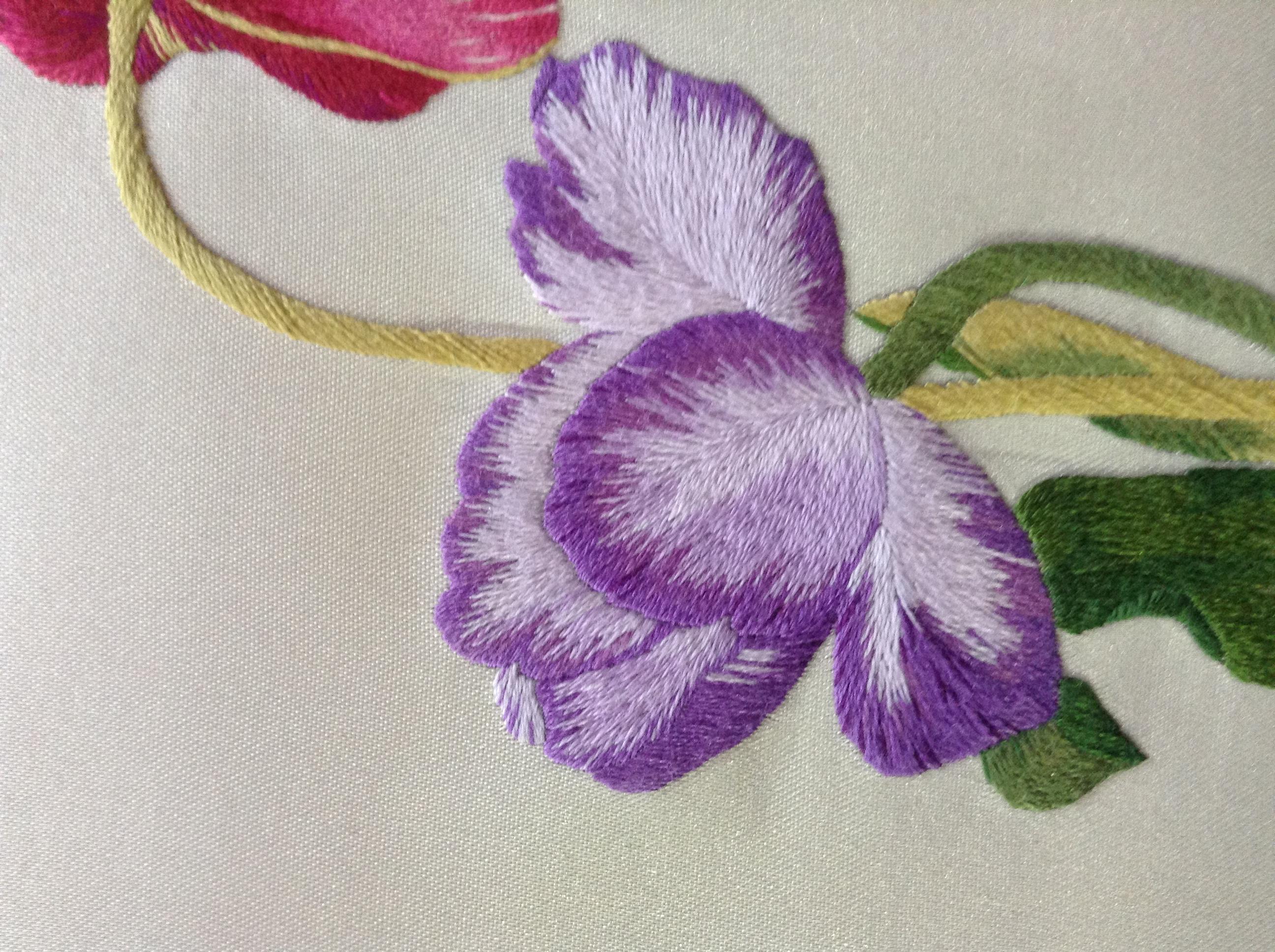 Tulip, detail