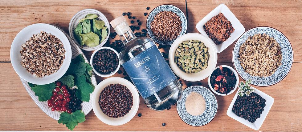 Različne vrste gina in začimbe za Karakter london dry gin