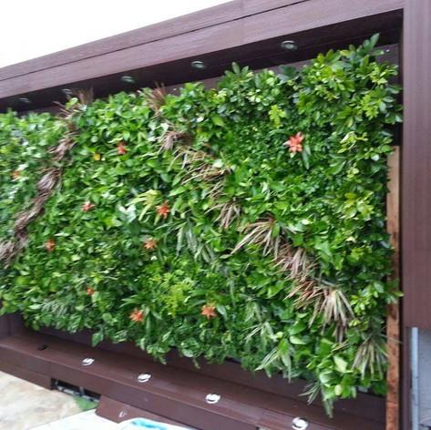 植物牆 案例15