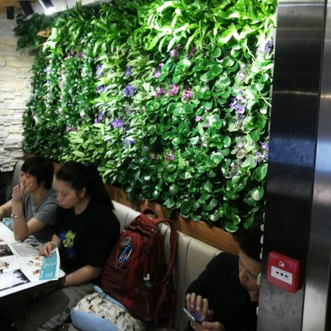 植物牆 案例13