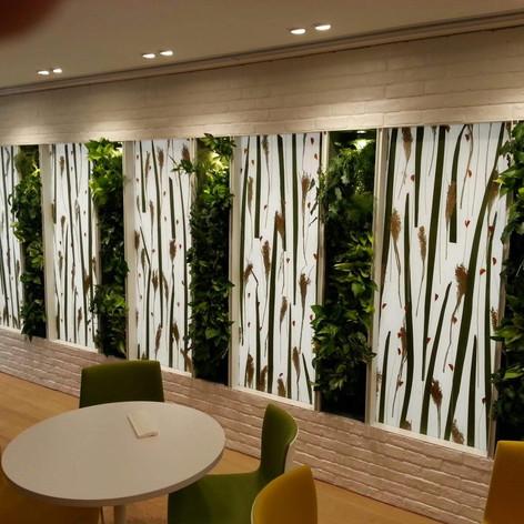 植物牆 案例18