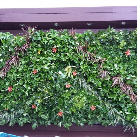 植物牆 案例8