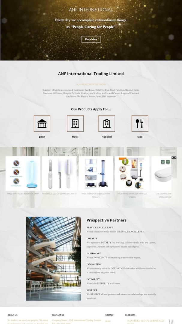 ANF-INTL 貨品代理 - 網站設計