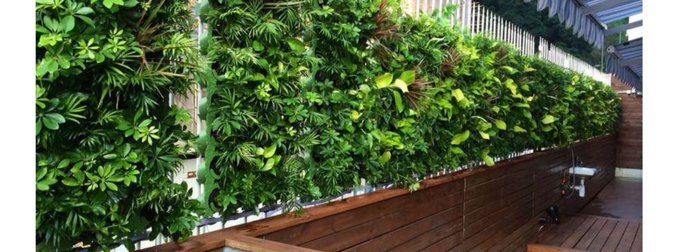 Green Wall2.jpg