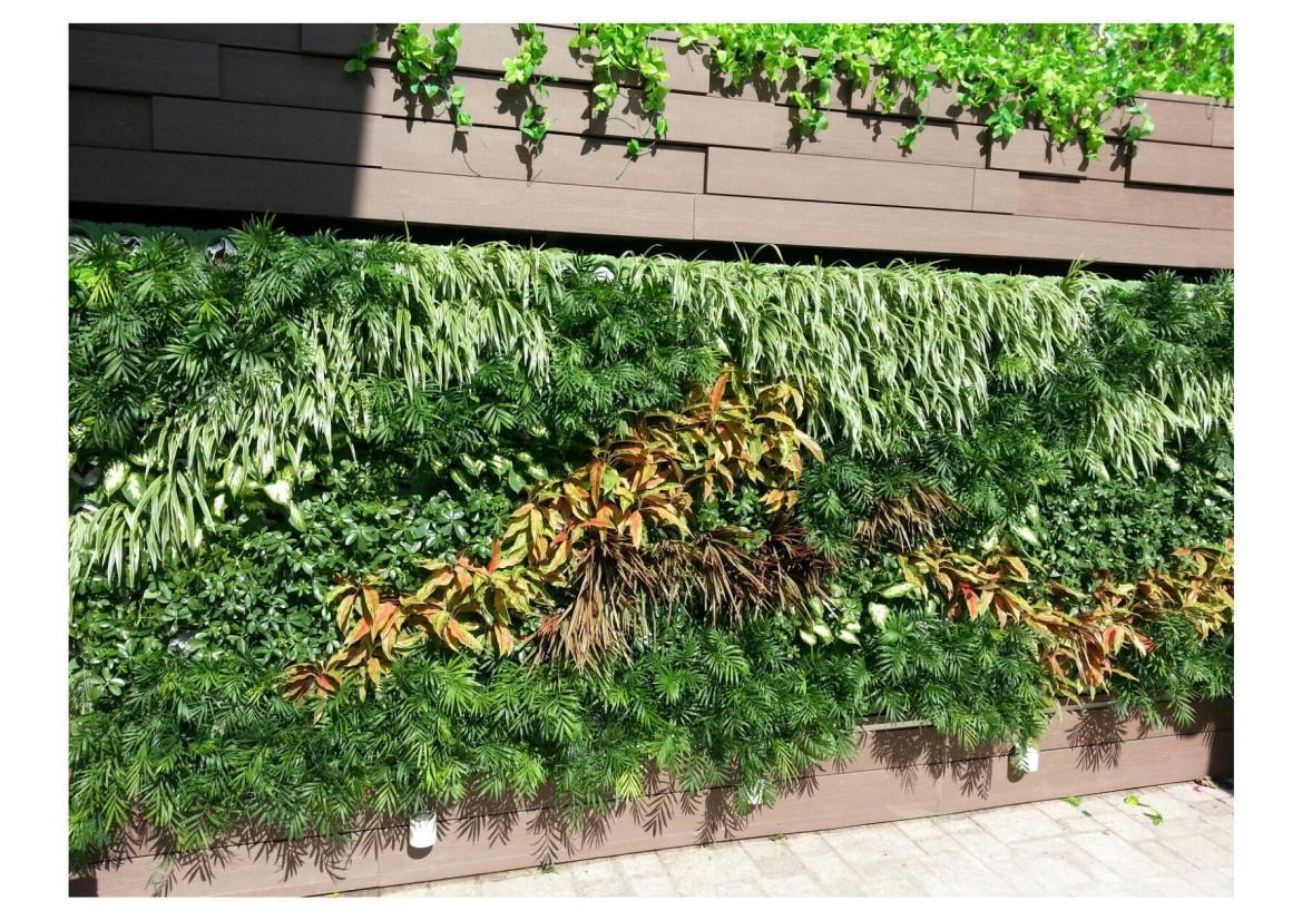 Green Wall5.jpg