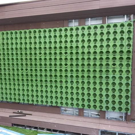 植物牆 案例6