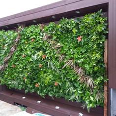 植物牆 案例5