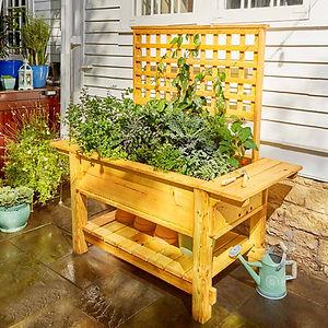 戶外木製造植物盤.jpg