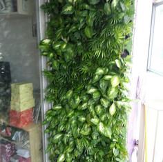 植物牆 案例11