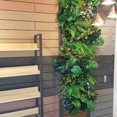 植物牆 案例23