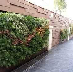 植物牆 案例9