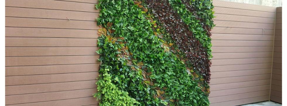 Green Wall6.jpg