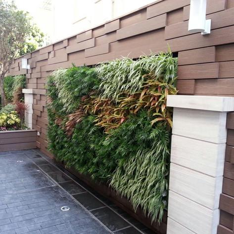植物牆 案例25