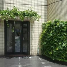 植物牆 案例12