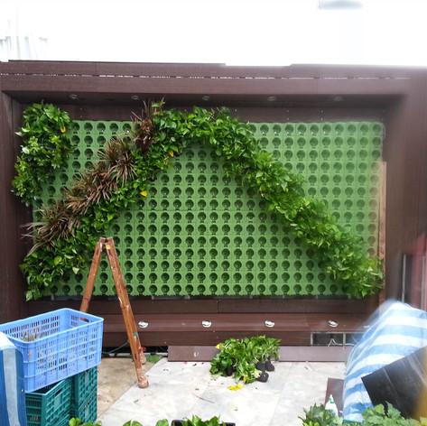 植物牆 案例7