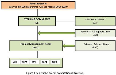 org structure.jpg