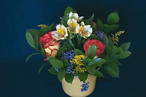 Flowers&Plants F=007 M=B R=1 S=1-Edit-2