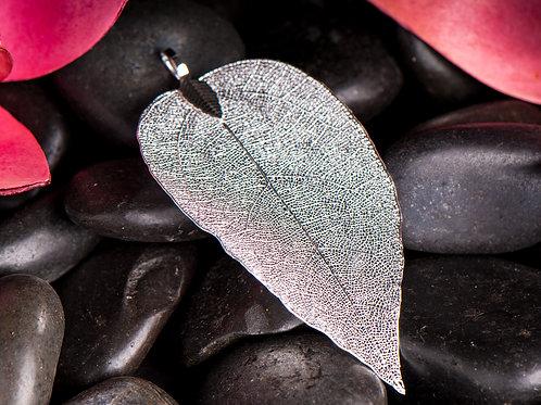 Silberblatt Mittel, Etwa 6 cm