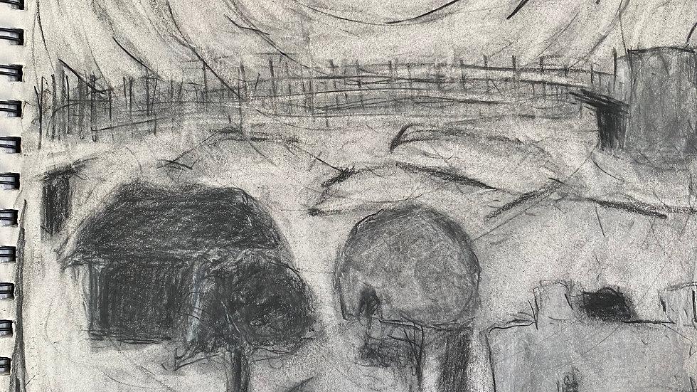 Experimental Drawing (10weeks/Online)