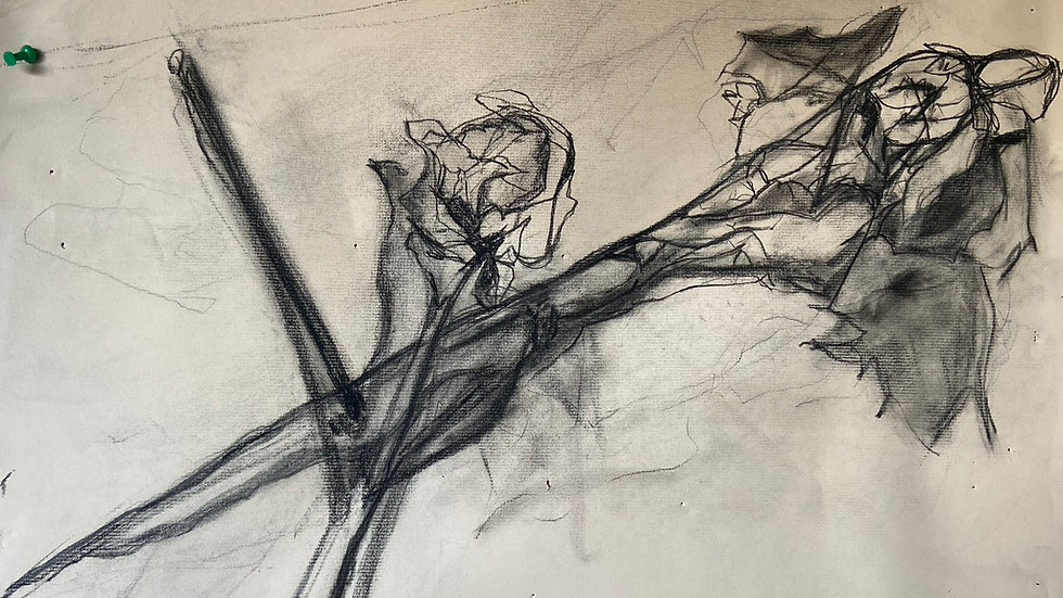 Intro to Observational Drawing: Vision and Skill (10-weeks/Online)
