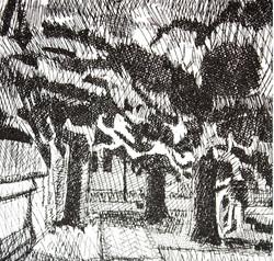 BK_by bruton parish cemetary, 6x4, 2013w