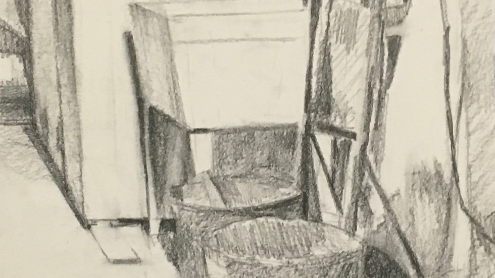 Intro to Observational Drawing: Vision and Skill (10weeks/Online)