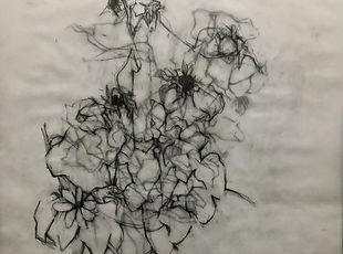mary freedman drawing.jpeg