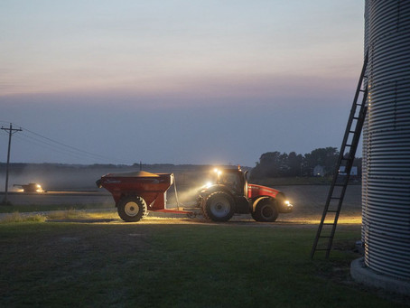 Surging Grain Prices Fuel Surprise Recovery