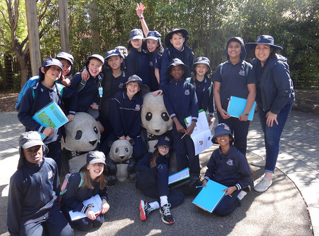 Year 5 Adelaide Zoo Excursion
