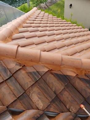 Soft Roof Wash