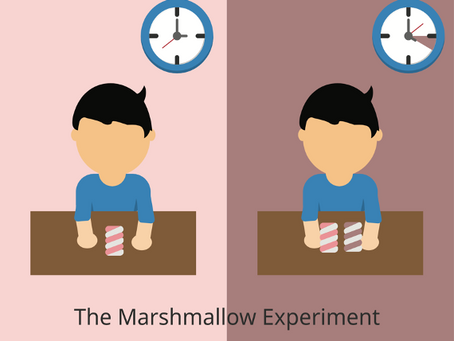 Measuring patience among young children in rural Pakistan: Lessons learned from the marshmallow test