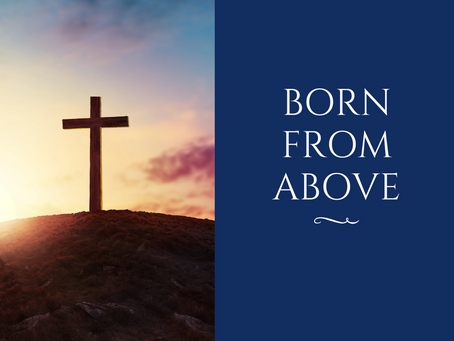 Born from Above by Rev. Richard  Hasselbach, Ph.D.