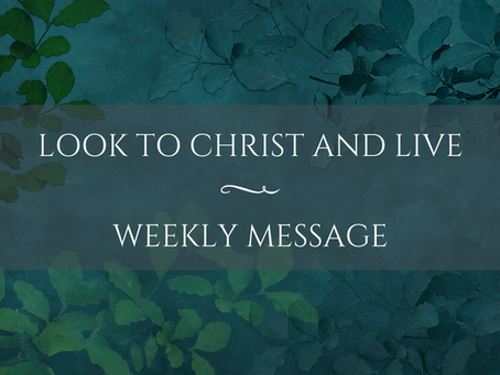 Weekly Message   Look to Christ and Live