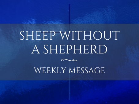 Weekly Message | Sheep Without a Shepherd